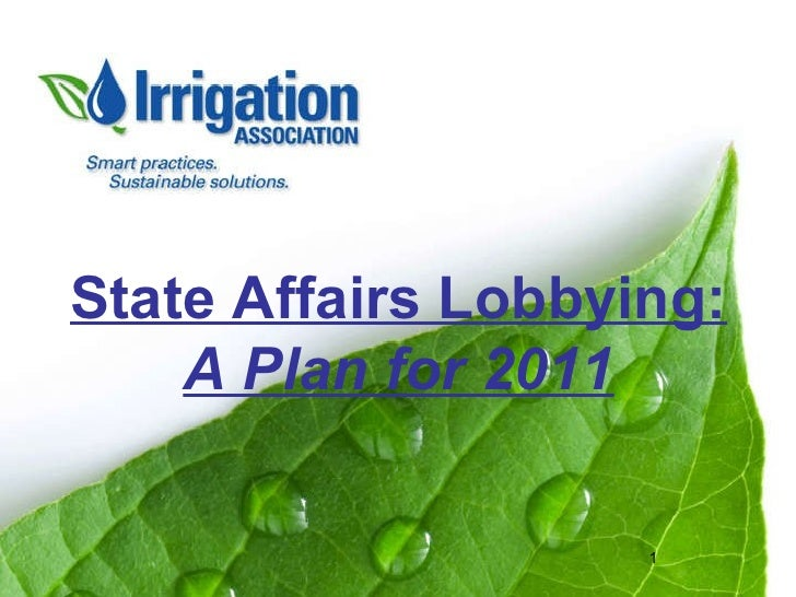 State Affairs Lobbying: A Plan for 2011