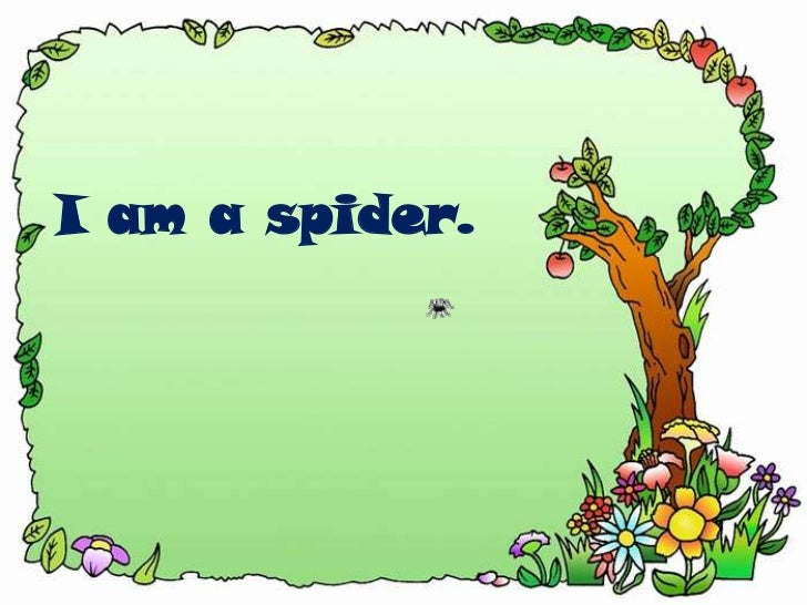 I am a spider.