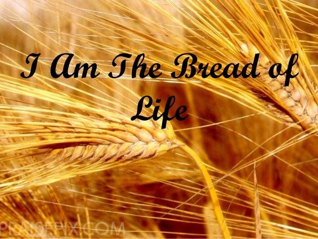 I Am The Bread Of Life: John 6:50-51
