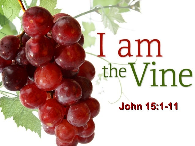 I Am The Vine John 151 11John 11