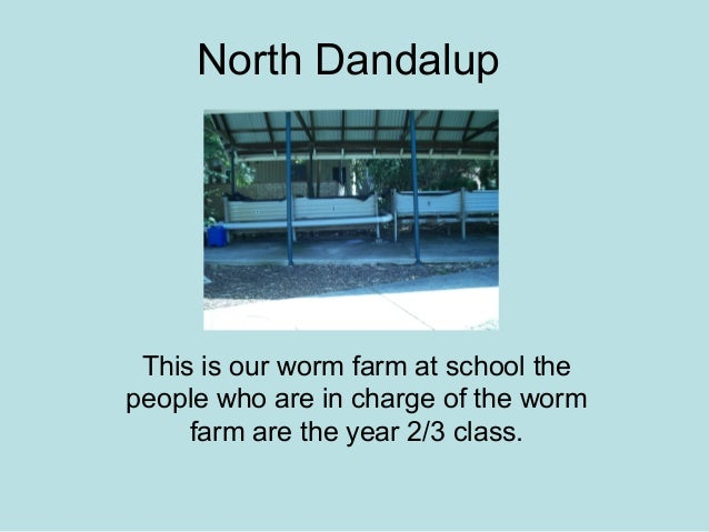 North Dandalup This is our worm farm at school the people who are in charge of the worm farm are the year 2/3 class.