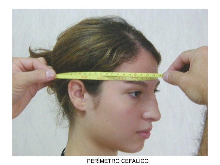 Resultado de imagen de antropometría miden cabezas de adolescentes