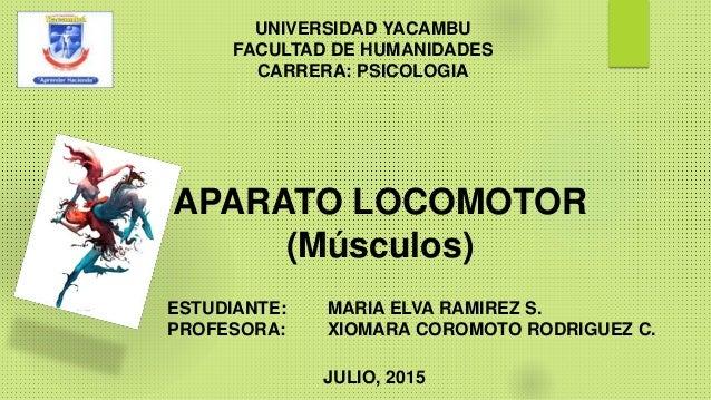 APARATO LOCOMOTOR (Músculos) UNIVERSIDAD YACAMBU FACULTAD DE HUMANIDADES CARRERA: PSICOLOGIA ESTUDIANTE: MARIA ELVA RAMIRE...