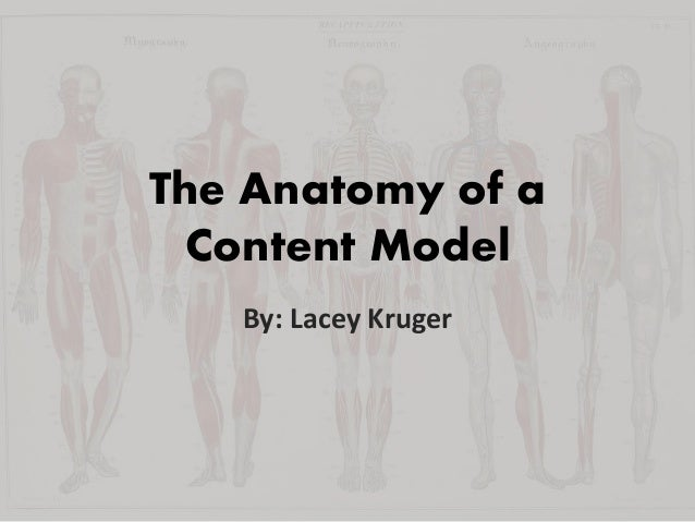 The Anatomy of a Content Model By: Lacey Kruger