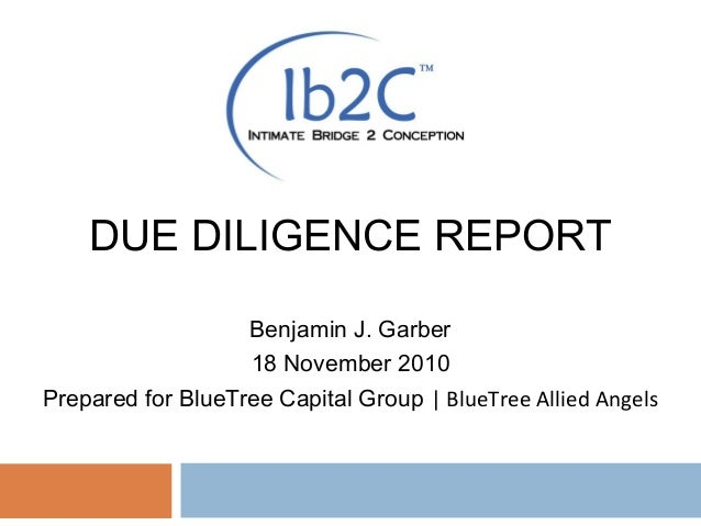 DUE DILIGENCE REPORT Benjamin J. Garber 18 November 2010 Prepared for BlueTree Capital Group | BlueTree Allied Angels