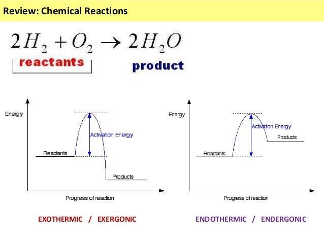 IB Biology 2.5 Slides: Enzymes Slide 2