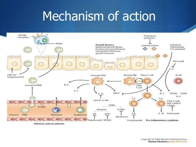 Management Of Inflammatory Bowel Disease
