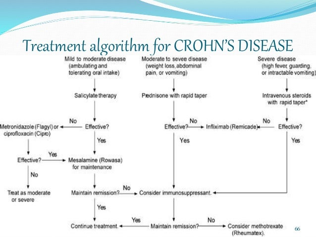 crohn and colitis diet guide pdf