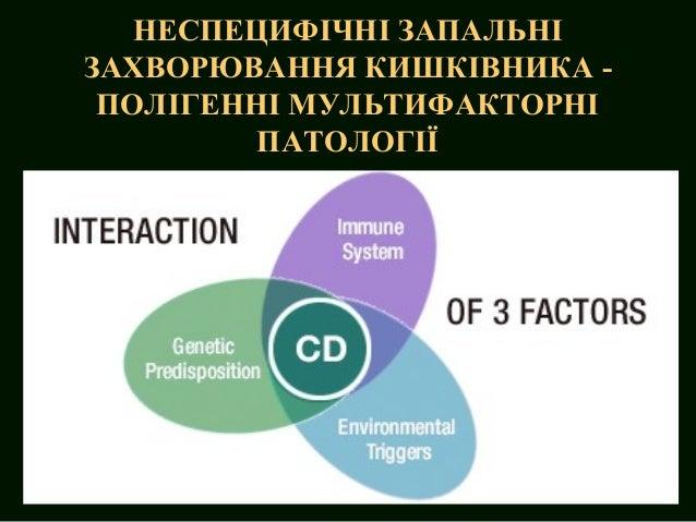 Inflammatory bowel disease Slide 2