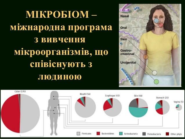 Inflammatory bowel disease Slide 3