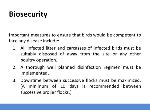 Biosecurity Important measures to ensure that birds would be competent to face any disease include: 1. All infected litter...