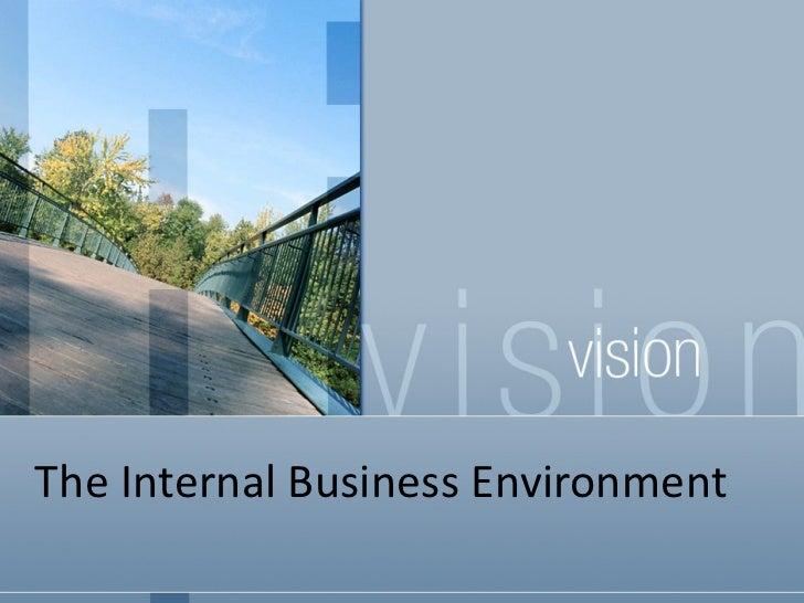 The Internal Business Environment