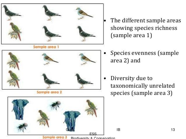 Ib Ess Topic 4 Conservation And Biodiversity