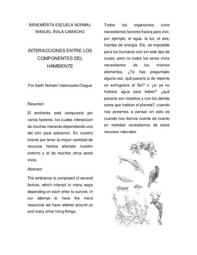 BENEMÉRITA ESCUELA NORMAL MANUEL ÁVILA CAMACHO INTERACCIONES ENTRE LOS COMPONENTES DEL HAMBIENTE Por Ibeth Nohemi Valenzue...