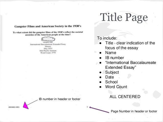 Ib application essay help