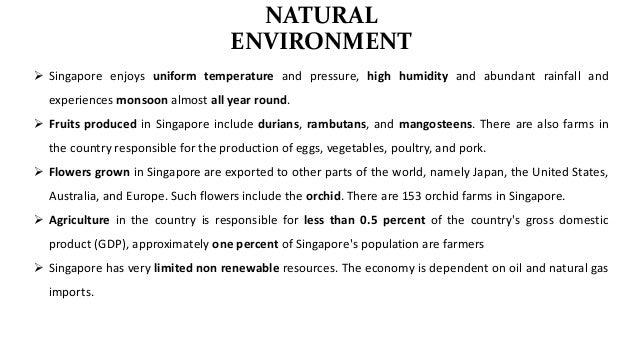 International Business: SINGAPORE