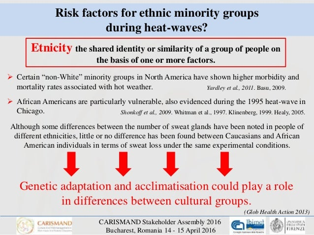 """what is the difference between a group at risk for poor health and a vulnerable population What is the difference between a group """"at risk"""" for poor health and a group considered a """"vulnerable"""" population."""