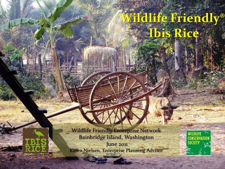 Wildlife Friendly® Ibis Rice<br />Wildlife Friendly Enterprise Network<br />Bainbridge Island, Washington<br /> June 2011<...
