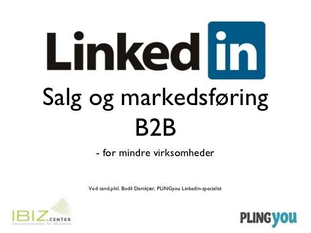 Salg og markedsføring         B2B       - for mindre virksomheder    Ved cand.phil. Bodil Damkjær, PLINGyou Linkedin-speci...