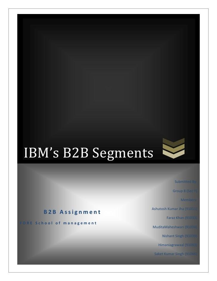 IBM B2B segments