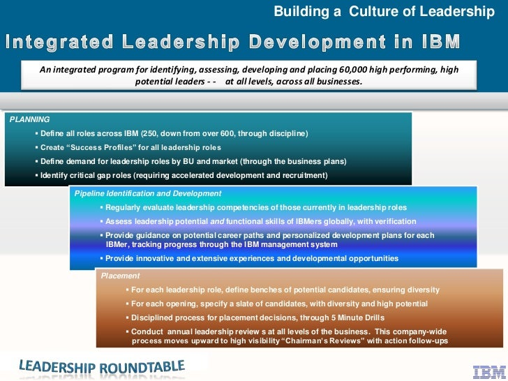 The IBM Leadership Development Framework