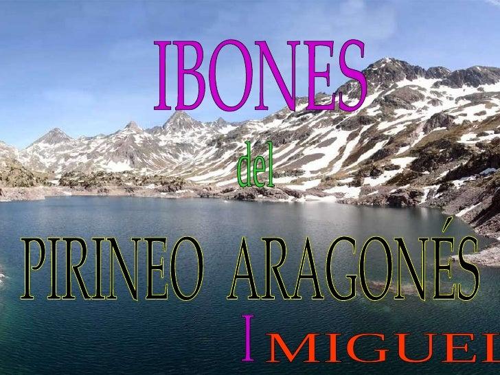 IBONES del PIRINEO  ARAGONÉS I MIGUEL