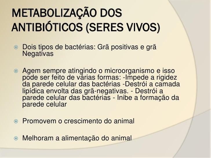 METABOLIZAÇÃO DOSANTIBIÓTICOS (SERES VIVOS)   Dois tipos de bactérias: Grã positivas e grã    Negativas   Agem sempre at...