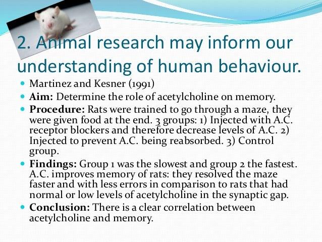 Martinez and kesner evaluation essay