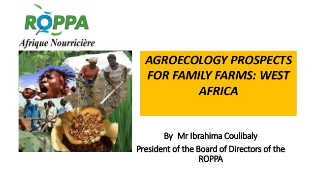 By Mr Ibrahima Coulibaly President of the Board of Directors of the ROPPA AGROECOLOGY PROSPECTS FOR FAMILY FARMS: WEST AFR...