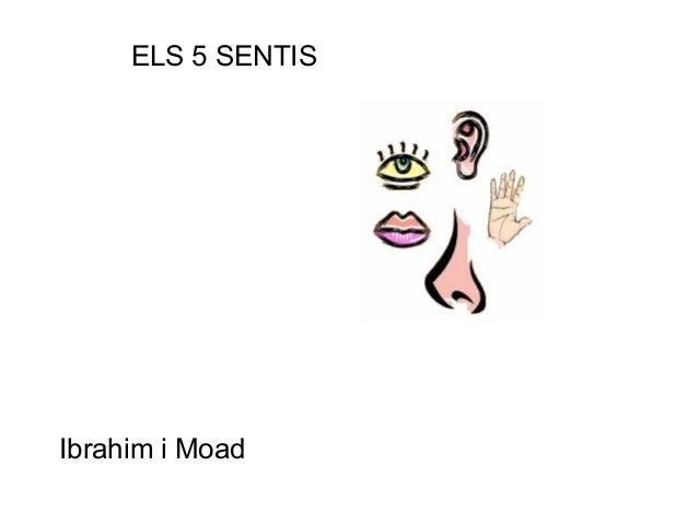 ELS 5 SENTISIbrahim i Moad
