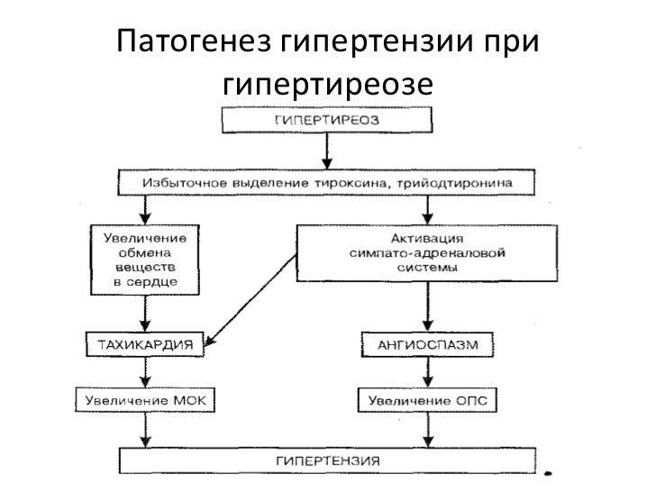 Артериальная гипертензия при гипертиреозе