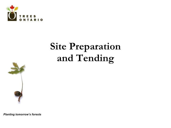Site Preparation and Tending