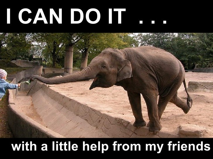 I CAN DO IT  . . .   with a little help from my friends