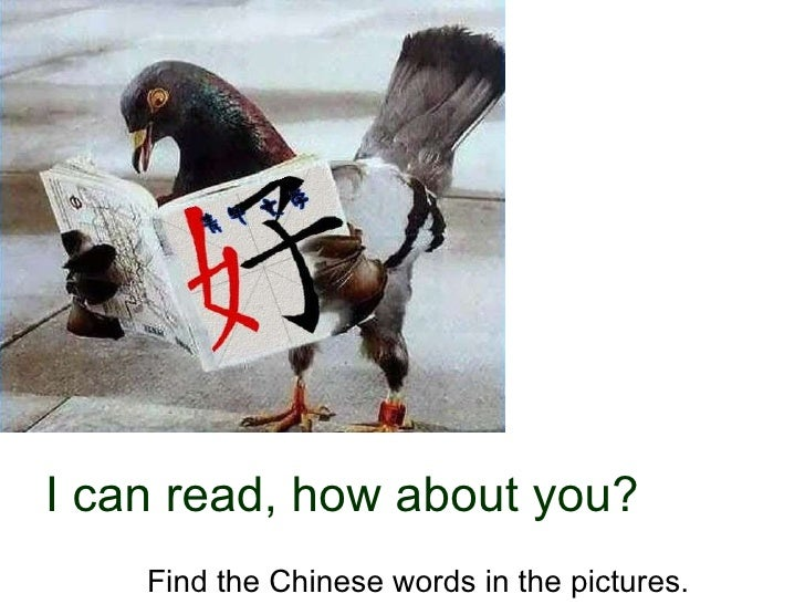 I can read, how about you? Find the Chinese words in the pictures.