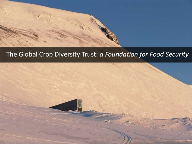 The Global Crop Diversity Trust: a Foundation for Food Security