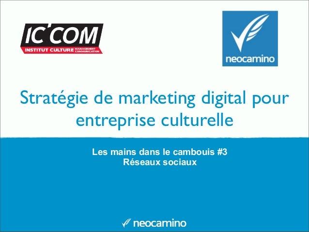 Stratégie de marketing digital pour entreprise culturelle Les mains dans le cambouis #3 Réseaux sociaux