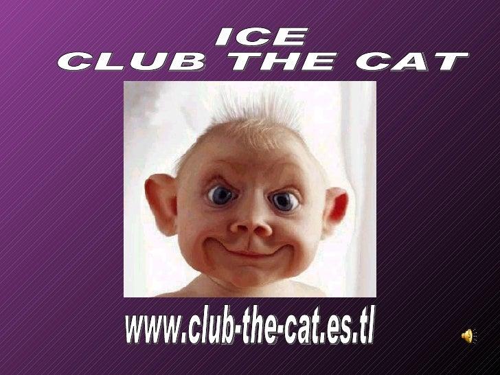 www.club-the-cat.es.tl ICE CLUB THE CAT