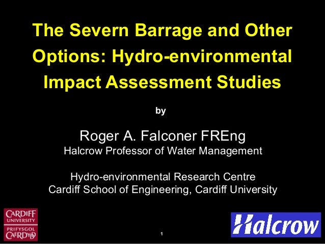 11 The Severn Barrage and Other Options: Hydro-environmental Impact Assessment Studies by Roger A. Falconer FREng Halcrow ...