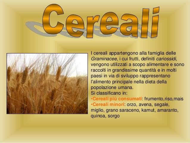 I cereali appartengono alla famiglia delle Graminacee, i cui frutti, definiti cariossidi, vengono utilizzati a scopo alime...