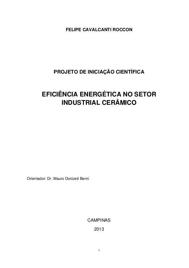 FELIPE CAVALCANTI ROCCON               PROJETO DE INICIAÇÃO CIENTÍFICA        EFICIÊNCIA ENERGÉTICA NO SETOR              ...
