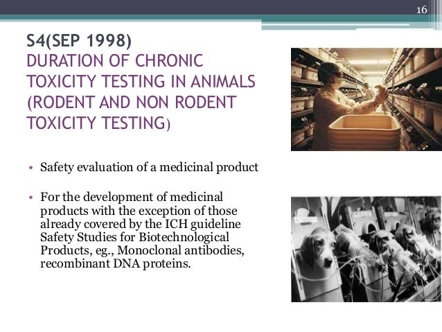 ethics of animal testing and experimentation Express your feelings about what you think about why or why not it is ethical for  experiments to be conducted on animals.