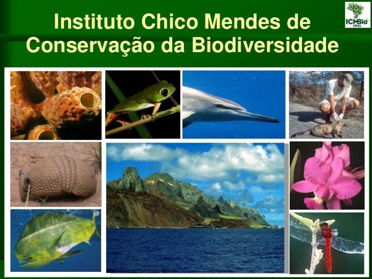 Instituto Chico Mendes deConservação da Biodiversidade