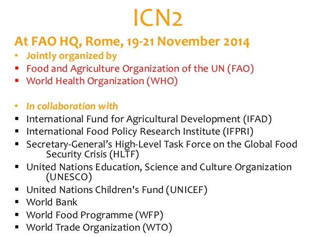 United Nations Food And Agriculture Organization Obesity