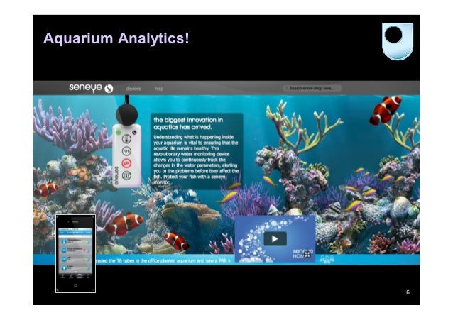 Aquarium Analytics!                      6
