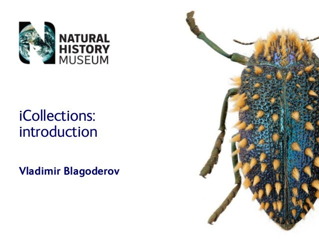 iCollections: introduction Vladimir Blagoderov