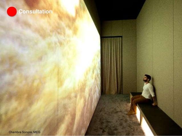 Consultation Chambre Sonore, MEG