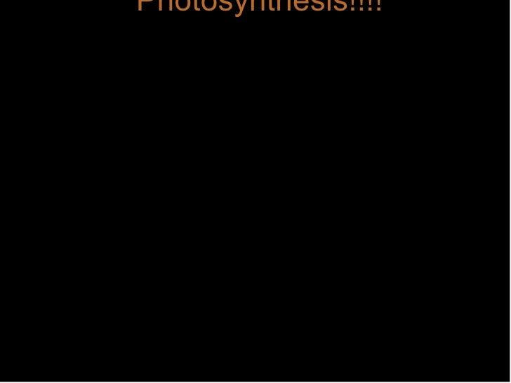 Photosynthesis!!!!