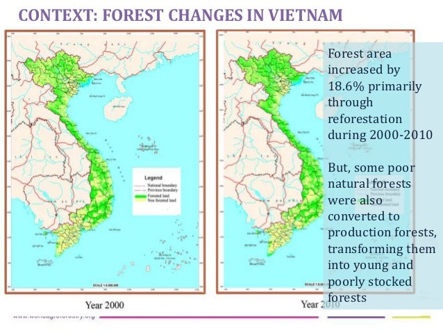 Coffee As Driver Of Forest Change In The Central Highlands Of Vietnam