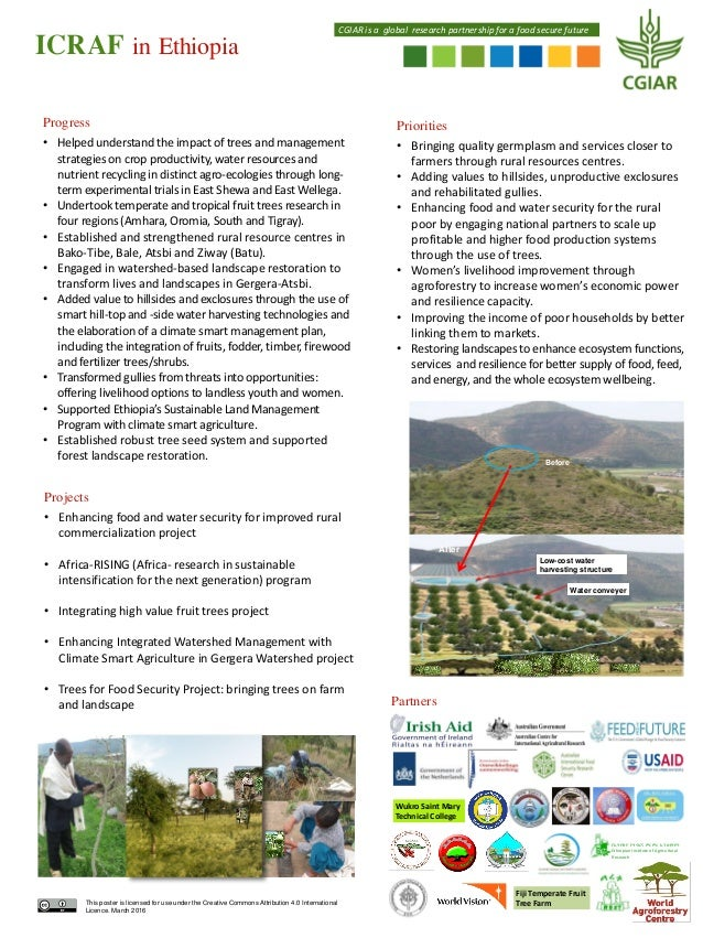 ICRAF in Ethiopia Priorities • Bringing quality germplasm and services closer to farmers through rural resources centres. ...