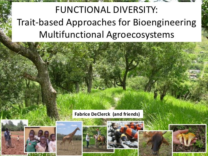 FUNCTIONAL DIVERSITY:Trait-based Approaches for Bioengineering      Multifunctional Agroecosystems             Fabrice DeC...